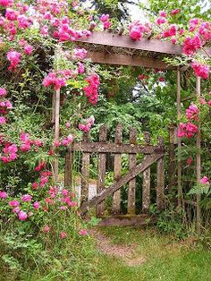 Pallet Pergola And Gate   ---   #pallets