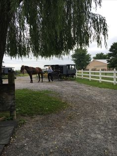 Amish Farm, Country Roads, Horses, Animals, Animales, Animaux, Horse, Animal, Animais