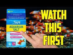 Watch this before you use Salt in your Fish Tank! Freshwater Aquarium, Aquarium Fish, Pet Accessories, Aquarium Accessories, Pet Fish, Small Fish, Tanked Aquariums, Aquatic Plants, Tropical Fish