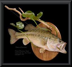 largemouth bass mounts - Google Search