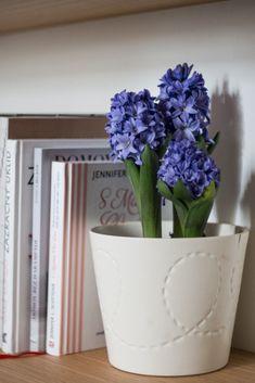 Inspirujte se u nejlepších aneb úklid podle FlyLady, Marie Kondo a dalších - Mámami Flylady, Mario, Planter Pots, Vase, Decor, Blog, Decoration, Blogging, Vases