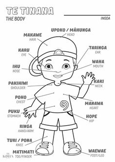 Toddler Learning Activities, Play Based Learning, Preschool Lessons, Lessons For Kids, Preschool Activities, School Resources, Teaching Resources, Teaching Ideas, Waitangi Day