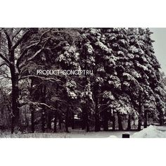 Концепция Продукта. Качественные продукты.: #природа#зима#деревья#россия#погода#концепцияпроду...