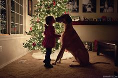 The Love between a child and dog