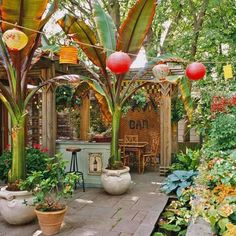 Add more green to your patio