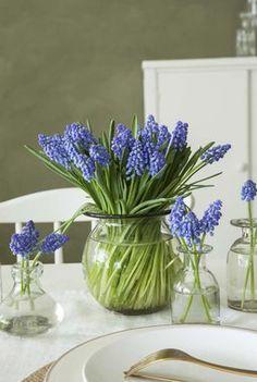En lav oval vase er fin på bordet. Glass Vase, Easter, Creative, Garden, Flowers, Inspiration, Bouquets, Home Decor, Blue Flowers