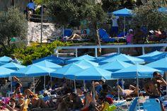 Navagos Beach Bar Download