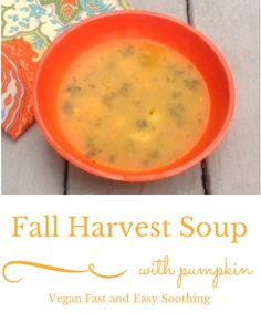 Our best Savory Fall harvest soup with #pumpkin puree- easy #vegan glutenfree