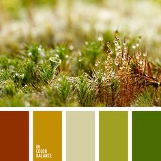зеленый, коричневый, красно-коричневый, оливковый цвет, оттенки зеленого, оттенки коричневого, рыже-коричневый цвет, салатовый, тёмно-зелёный, цвет мха.