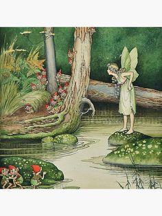 Art And Illustration, Fantasy Kunst, Fantasy Art, Vintage Fairies, Fairytale Art, Flower Fairies, Fairy Art, Magical Creatures, Illustrators
