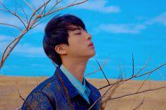 BTS Love Yourself 轉 'Tear' Concept Photo Y Version (JIN)