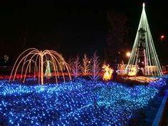 Image detail for -wonderful christmas lighting - Home Interior Designs Inspiration