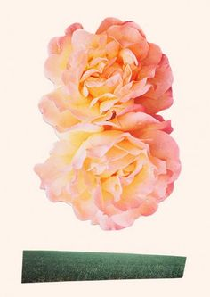 peachy keen collage by laura redburn