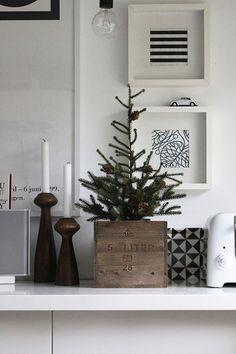 ツリーと、キャンドル。  鉢カバーと燭台に気を遣えば、クリスマスも大人仕様に。