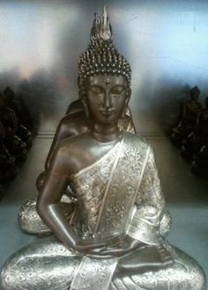 """""""You, yourselves, must walk the path.  Buddhas only show the way.""""  - from the Dhammapada"""