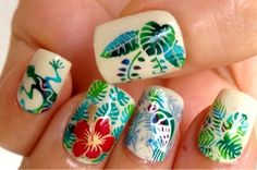 Tropical Collection 01 & 12