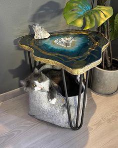 "Lemonmade Interior on Instagram: ""Favourite space 🥰⠀ ⠀ ⠀ #kittycat #kittylove #kittenlife #accenttable #agateslice #artdecohome #bluedecor #blueinterior #chicdecor…"" Art Deco Home, Kitten, Space, Cats, Interior, Instagram, Home Decor, Cute Kittens, Floor Space"