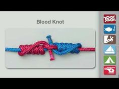 Blood Knot Tying Animation (home)