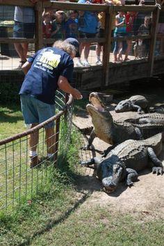 East Texas Gator & Wildlife Park
