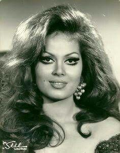 Turkan Soray The beauty queen of Turkish Cinema Divas, Celebs, Celebrities, Beauty Queens, Hollywood Stars, Elegant Woman, Vintage Beauty, Beautiful Actresses, Pretty Hairstyles