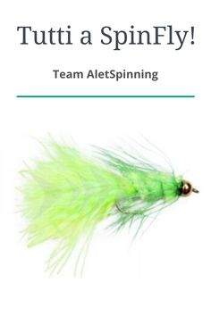 Scopri insieme al Teal Alet come pescare a spinning con questa tecnica... Pesca Spinning, Herbs, Herb, Spice
