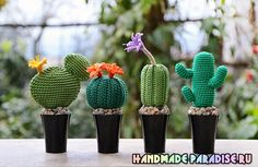 Crochet, knit and amigurumi. Cacti And Succulents, Planting Succulents, Cactus Plants, Crochet Cactus, Crochet Flowers, Crochet Animals, Crochet Toys, Crochet Things, Crochet Decoration