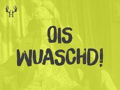 Heid is ma ois wuaschd...🤷🏻♂️🤷🏻♂️| Bayerische Sprichwörter zum Pinnen und Sammeln. Egal ob Wort, Spitzname, Spruch oder Schimpfwörter, wir haben die Besten für dich aus Bayern! Schau auch bei Instagram und Facebook rein! Winter Instagram, Bavaria, True Words, Austria, Jokes, Humor, Motivation, T Shirt, Fun