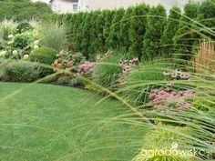 Die 68 Besten Bilder Von Sichtschutz Pflanzen Backyard Patio