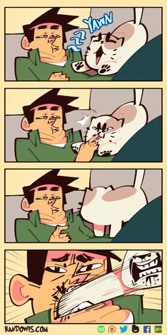 Short Comics – Page 3 – RandoWis Really Funny Memes, Stupid Funny Memes, Haha Funny, Funny Posts, Funny Cartoons, Funny Comics, Randowis Comics, Cat Yawning, Funny Comic Strips