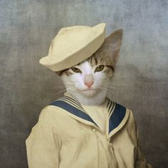 """Sailor cat """"The Little Rascal""""  by Martine Roch"""