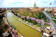 Timisoara Prague, Austria, City, Cities