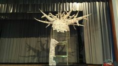 Our magic baobab is growing beautifully Magic, School, Beauty, Beauty Illustration