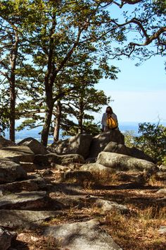 Jade enjoying the view from the top of the mountain.