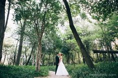 Riaan and Louisa's wedding at Oakfield Farm - Jeanette Verster Photography Forest Wedding, Wedding Bride, Dream Wedding, Wedding Dresses, Wedding Photos, Wedding Ideas, Couple Shoot, Engagement Shoots, Fashion Photo