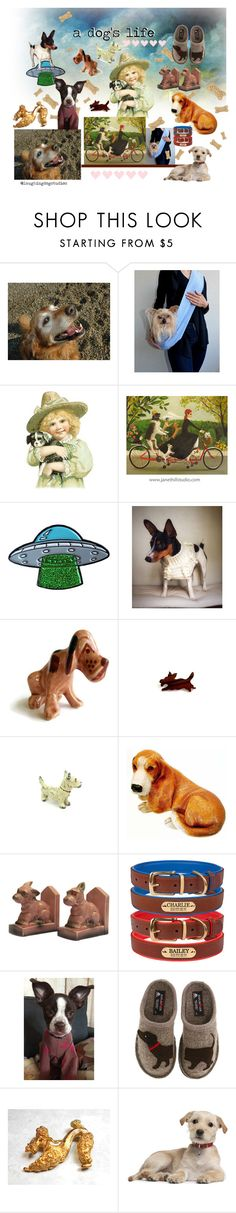 a dog's life by seasidecollectibles on Polyvore featuring interior, interiors, interior design, home, home decor, interior decorating, Haflinger, puppy, doglovers and dogart