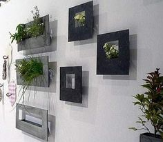 What a cool way to add greenery!