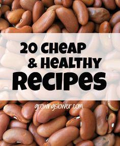 20 Cheap & Healthy Recipes |GrowingSlower