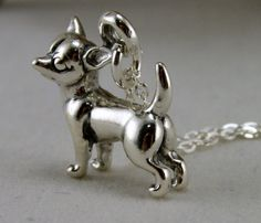 This little guys is ten pounds of spunk in a five pound bag! The sterling charm captures the fiesty and fun loving nature of the chihuahua