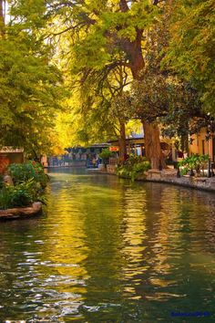 Early morning on the River Walk, San Antonio, TX
