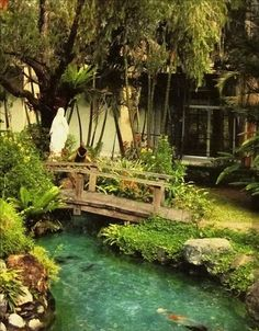 Achieve beautiful blue healthy water with Organic Pond dyes and products! Backyard Water Feature, Ponds Backyard, Garden Ponds, Backyard Ideas, Pond Bridge, Building A Pond, Natural Pond, Pond Waterfall, Pond Landscaping