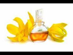 Les bienfaits de l'huile essentielle d'Ylang-Ylang