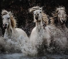 Collision Course | by Paul Keates