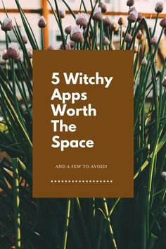 Witchcraft can exist in the digital realm too! Freja recommends 5 Witchy Apps Worth the Space! Everything from crystals to spellbooks! Witch Apps, Tarot, Wicca Witchcraft, Green Witchcraft, Traditional Witchcraft, Eclectic Witch, Practical Magic, Simple Magic, Modern Witch