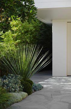 Landscape Design Coogee | Secret Gardens of Sydney                                                                                                                                                                                 More
