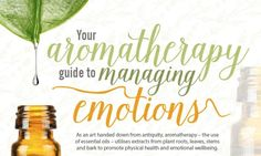 This guide from Holland & Barrett shows you how to get the most from essential oils to support your emotional well being.