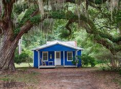 The perfect little blue house in Bluffton.