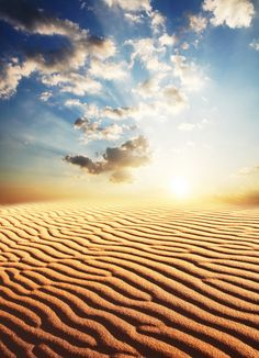 Sahara desert.  I love the lines the wind makes in the sand.