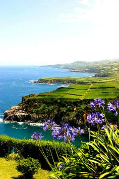 Sao Miguel, The Azores by Paulo Santos<--- I have so many saudades of this beautiful island!!