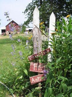 Bittersweet Farm: My Country Gardens