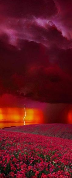 Sunset lightning display in Colorado